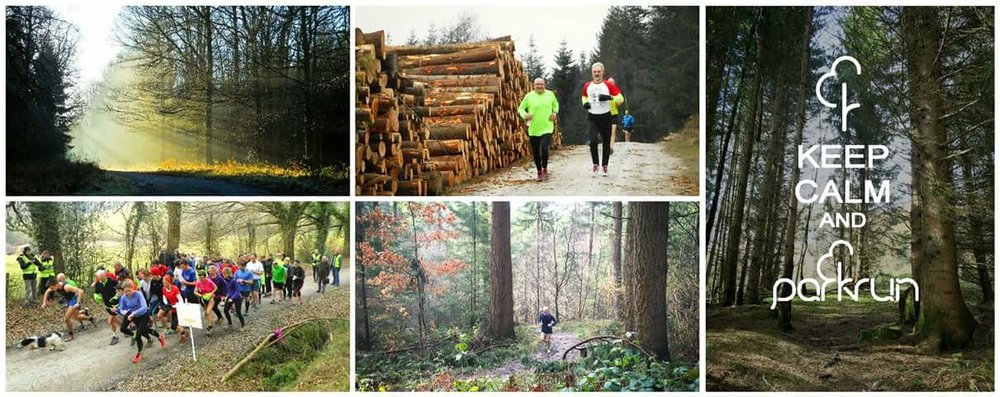 The breathtaking scenery of Mortimer Forest Photo Credit: Ludlow Park Run