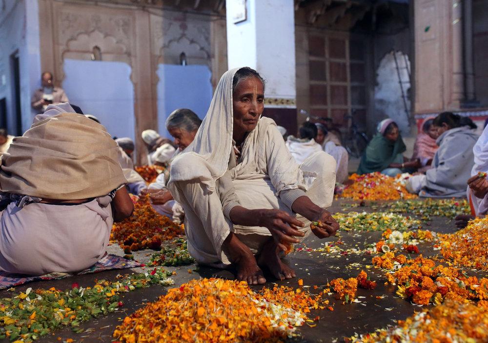 Uttar Pradesh Holi Festival10.jpg