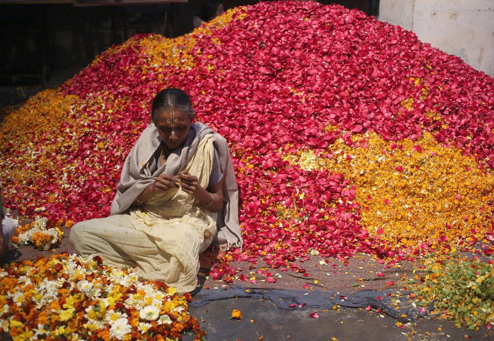 Uttar Pradesh Holi Festival11.jpg