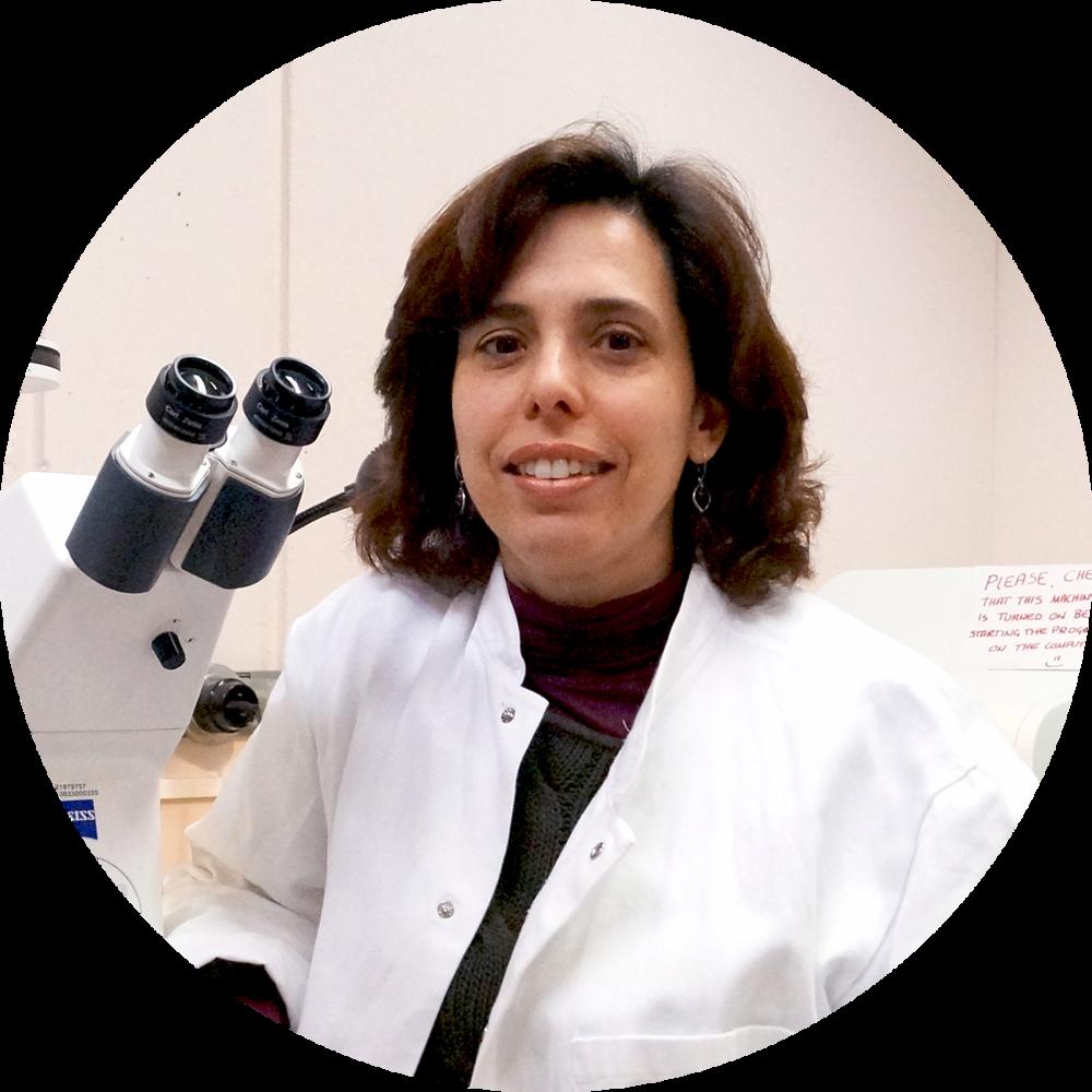 Prof. Alessandra K. Cardozo