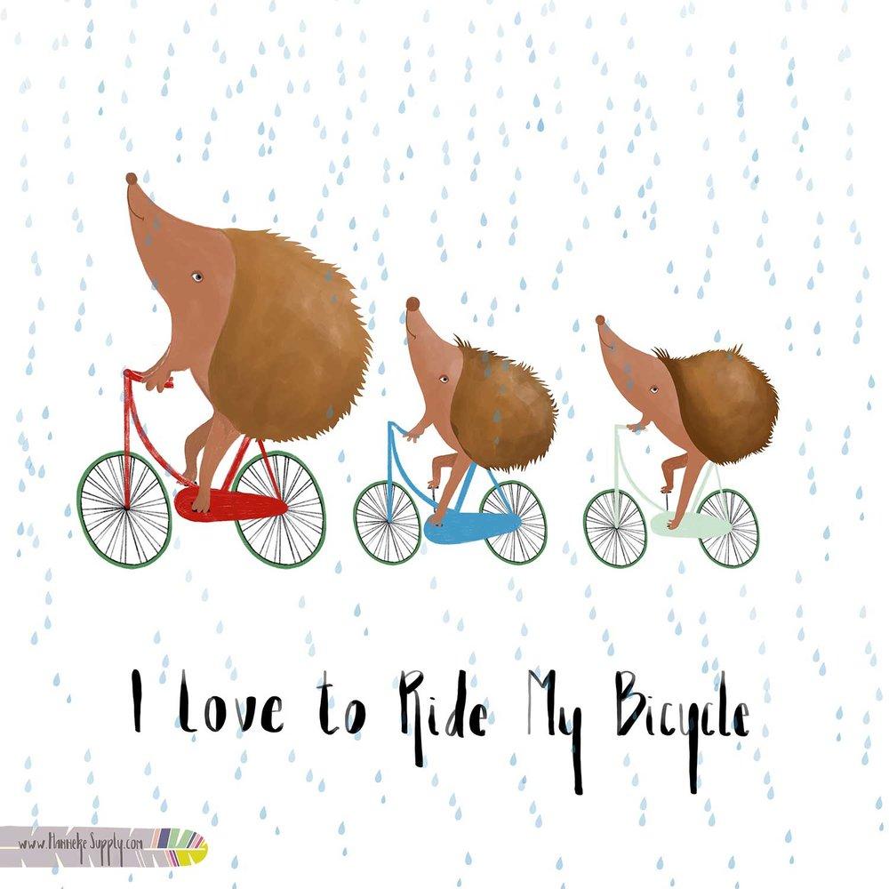 Hedge_Hawk_Bikingweb.jpg