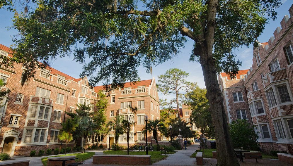 University of Florida - Department of Chemical Engineering