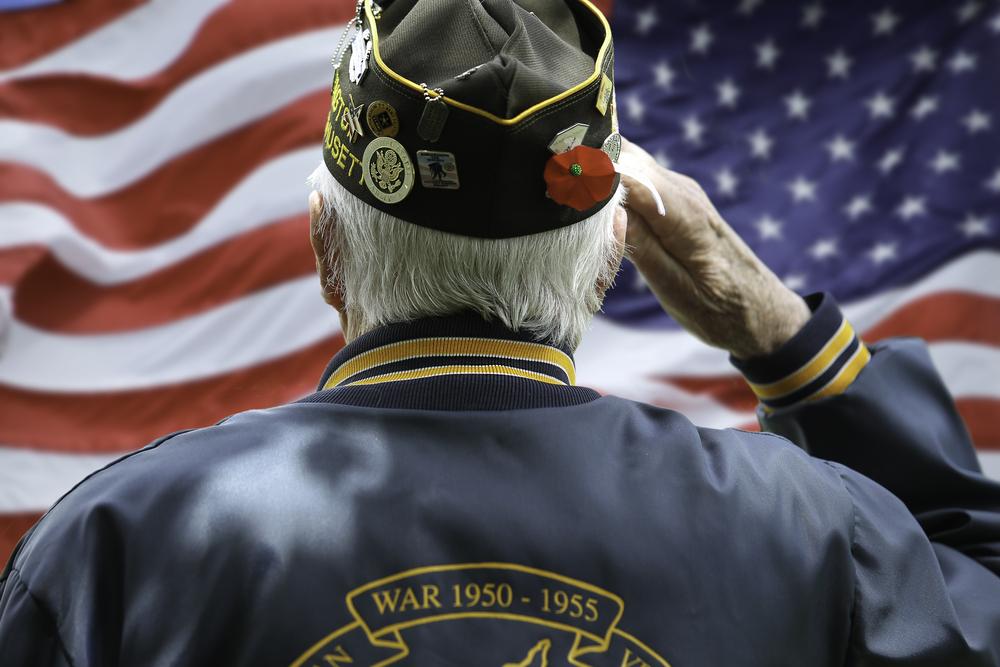 American Veteran Salute