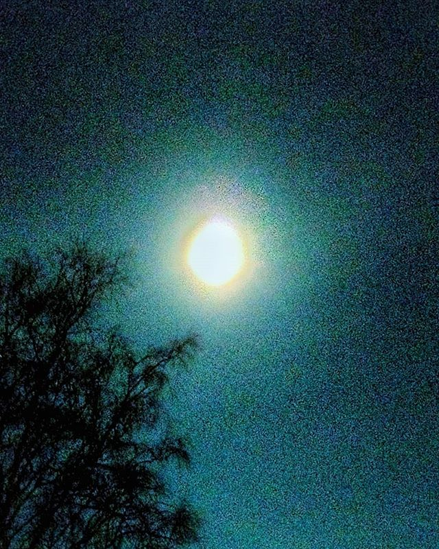moon #moon #night #thomandthewolves