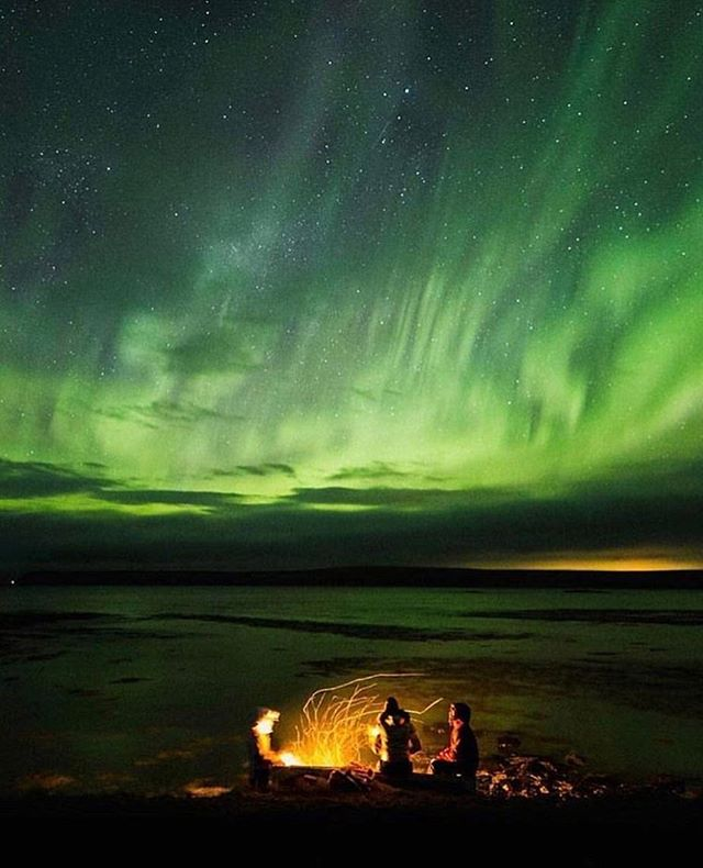 Do you want to visit all these amazing places? We create personalised road trip plans for our travel enthusiasts with our expert influencers! Check out our link in bio! Chase the amazing northern lights in iceland 📸@reeyco