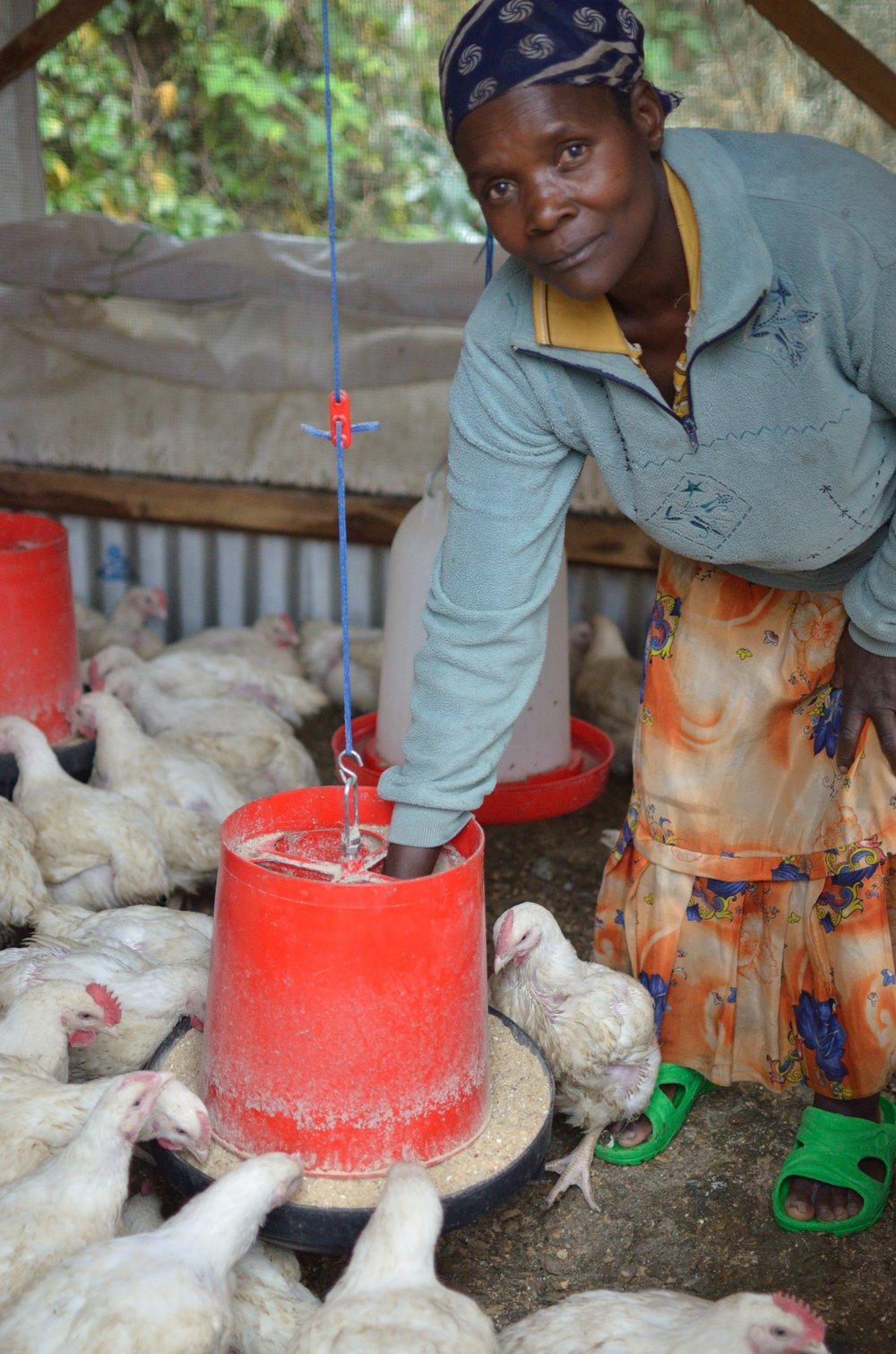 Kinigi Visit 6-Feeding Chickens.JPG