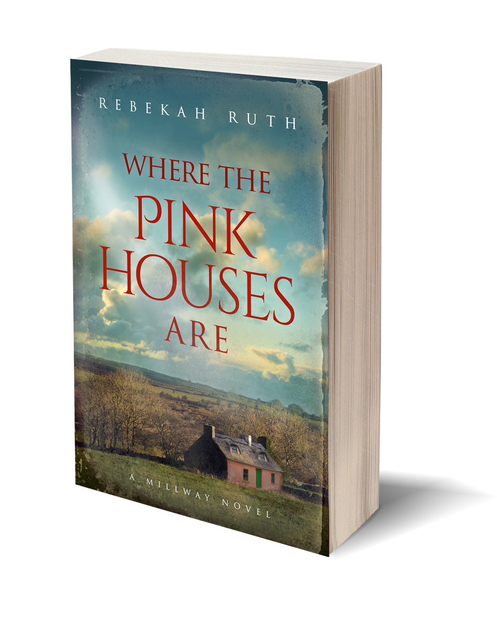 Pink Houses 3D cover.jpg