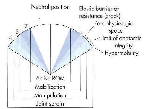 paraphysio space.jpg