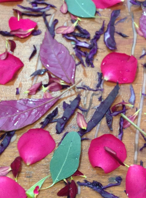 botanical print .jpg