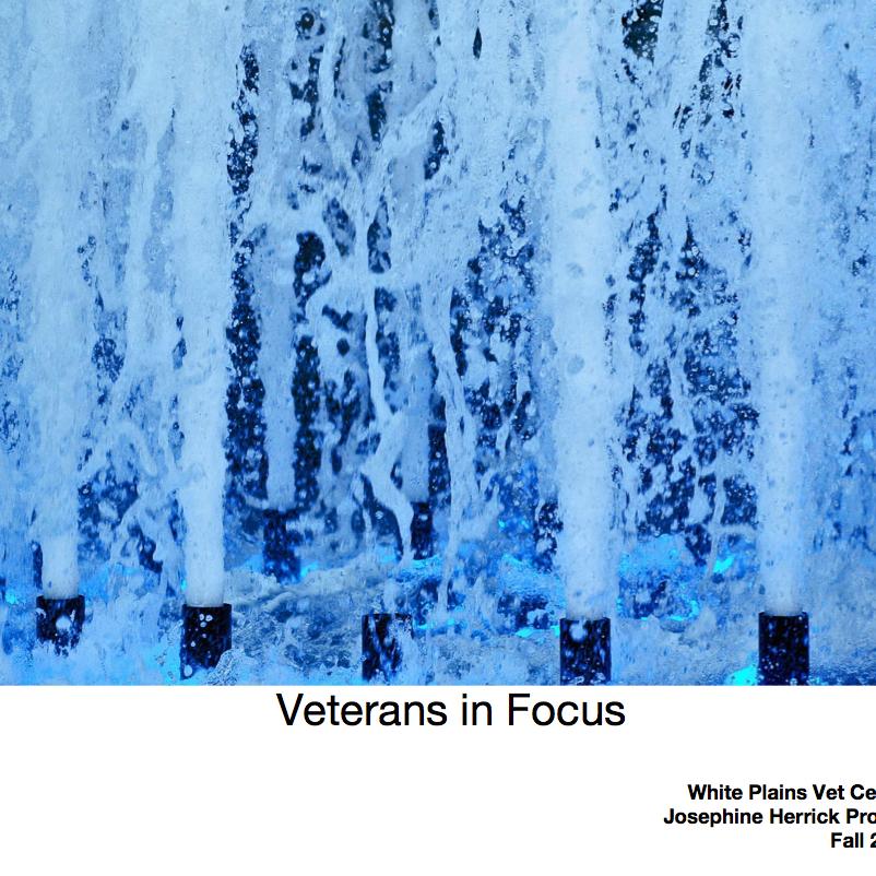 White Plains Veterans Center, Fall 2017