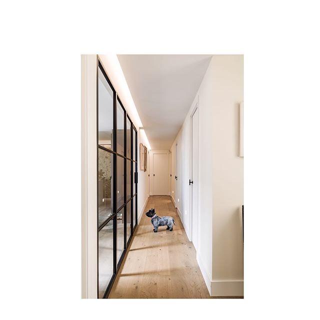 ❤️ #reforma #diseñointeriores #interiorismo #lightdesign #architecture #lovemyjob