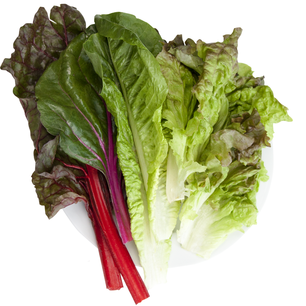 Hydroponic Super Salad Mix.png
