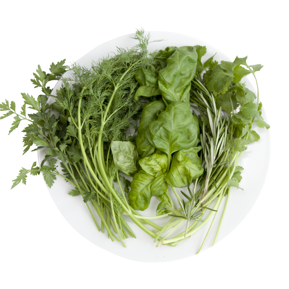 Hydroponic Herblicious Chef.png