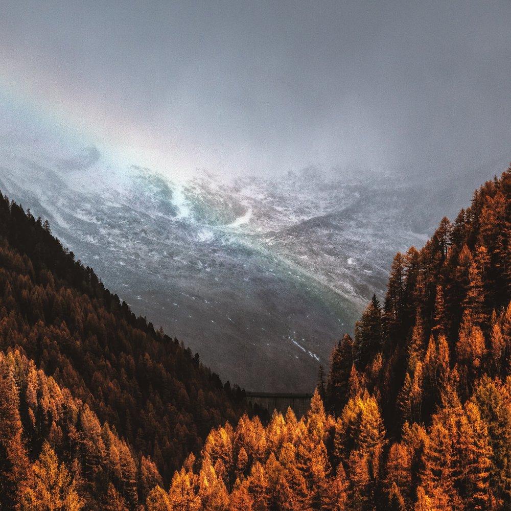 autumn-cold-dawn-701353.jpg