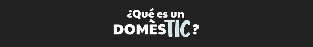 qué es domestic web.jpg