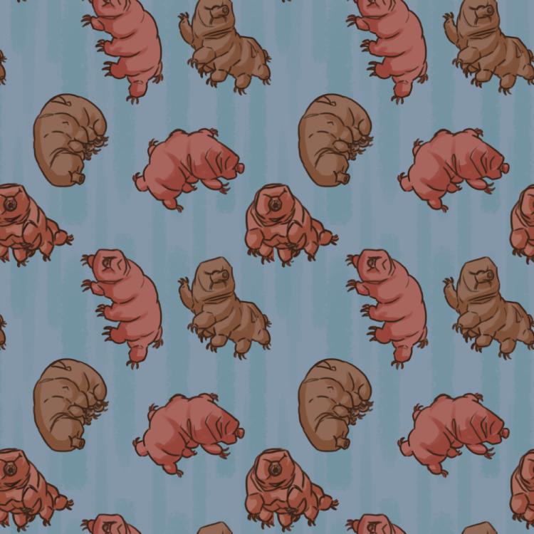 """Wonderful Waterbears""  Repeating Textile Print"