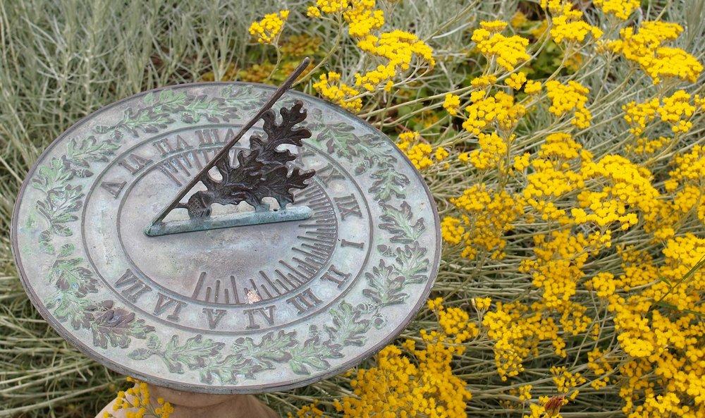 Calendriers du jardin et du potager - Ces calendriers contiennent des informations permettant d'effectuer les semis et les plantations, d'identifier la saisonnalité des produits et de planifier votre jardin.Cliquez ici pour lire la suite
