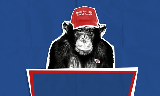 It's an alpha male thing: what dominant chimpanzees and Donald Trump have in common     https://www.theguardian.com/us-news/2017/sep/14/donald-trump-alpha-male-chimpanzee-behavior   From early 1974 through most of 1976, a male chimpanzee named Yeroen held the position of alpha leader in the large, open-air chimpanzee colony at Burgers zoo in Arnhem in the Netherlands. His reign was roughly coterminous with the presidential administration of Gerald R Ford in the United States.  Yeroen became famous (among Homo sapiens) when the Dutch primatologist Frans de Waal showcased his leadership style in a classic 1982 book, Chimpanzee Politics. In their Machiavellian machinations and power games, De Waal argued, chimps turn out to be a lot like human beings.  The curious case of Donald Trump, however, now shows that human beings turn out to be a lot like chimps....   Read more