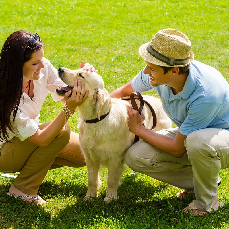 The Cove at Tiburon is a pet-friendly community
