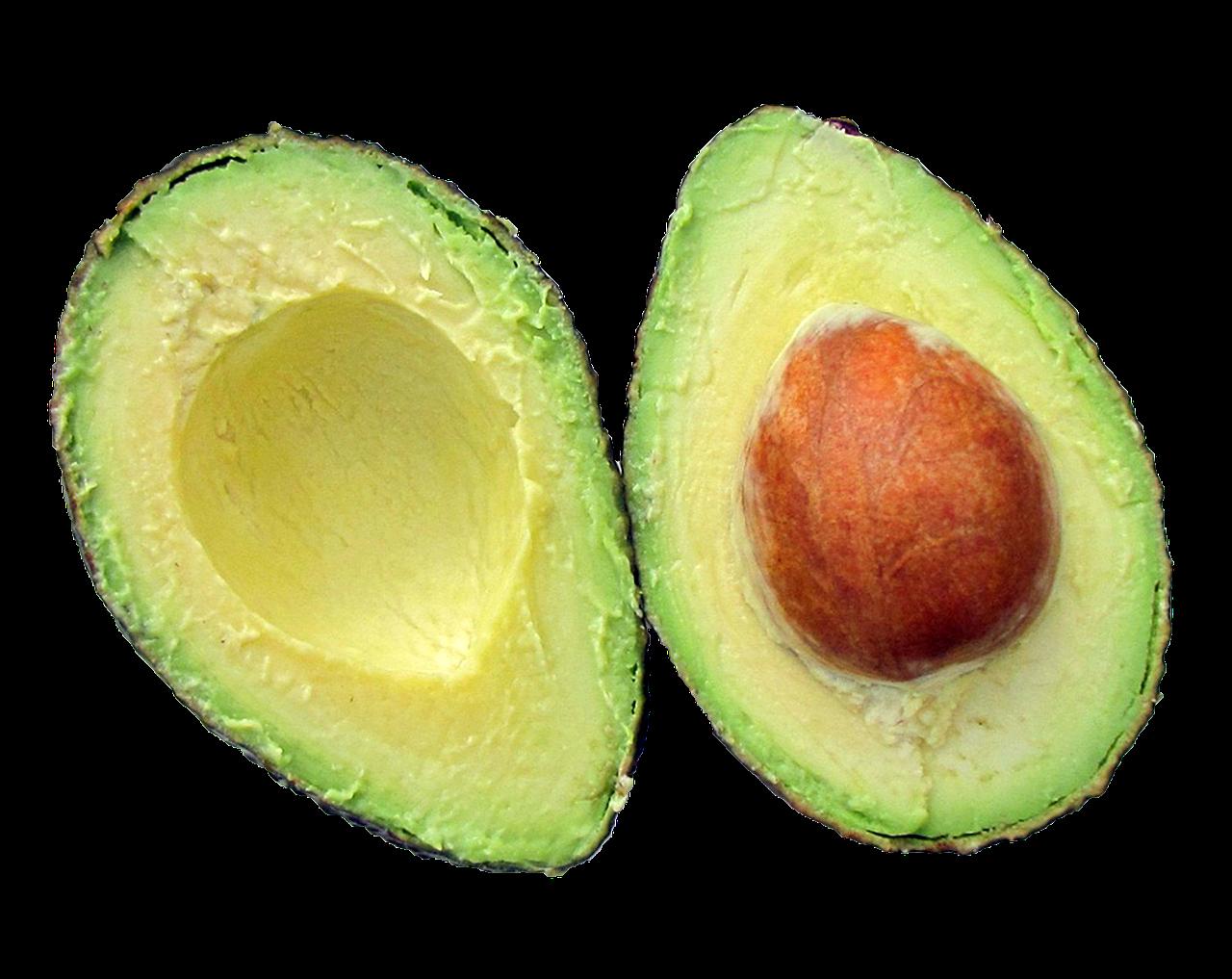 avocado-937459_1280