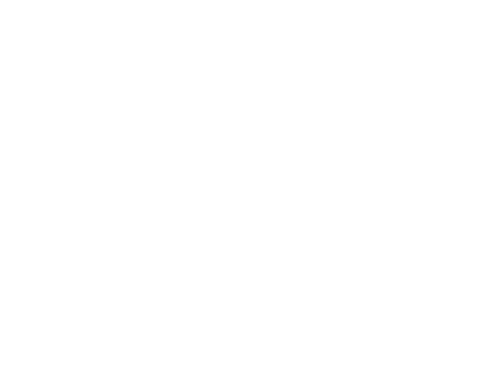 Learn the fundamentals of calligraphy with in person workshops