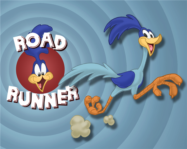 Road Runner Cartoon Wallpaper-727031.png