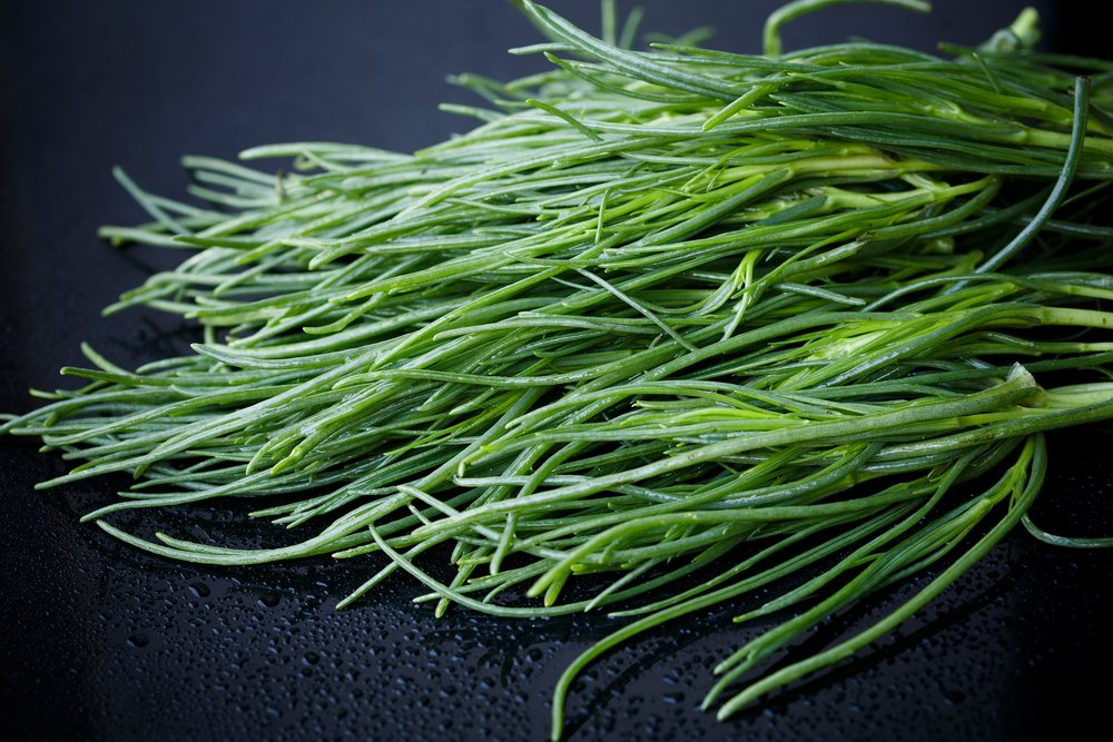 speciality crops -
