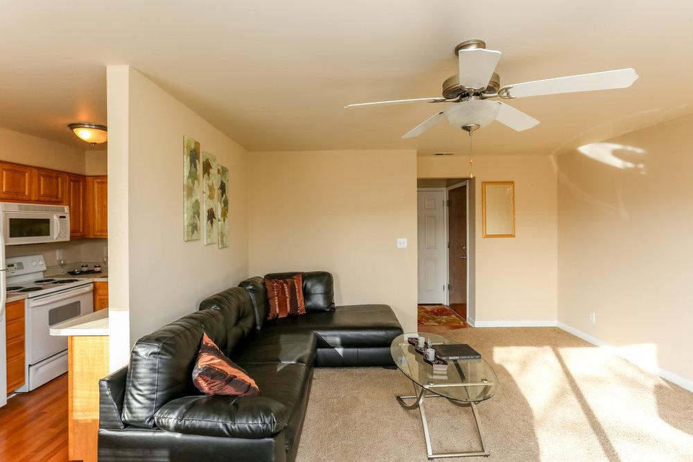buckridge-at-southport-indianapolis-living room.jpg