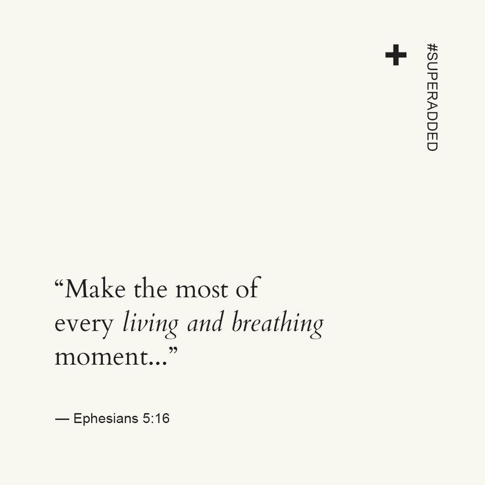 Scripture Quotes.jpg