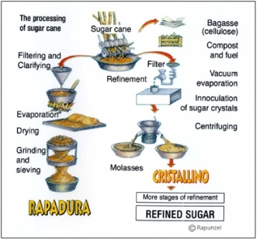 How cane sugar is made. As you can see, refined sugar gets stripped of all the trace minerals during the refining process. The image is taken from the Rapunzel company website - www.rapunzel.de