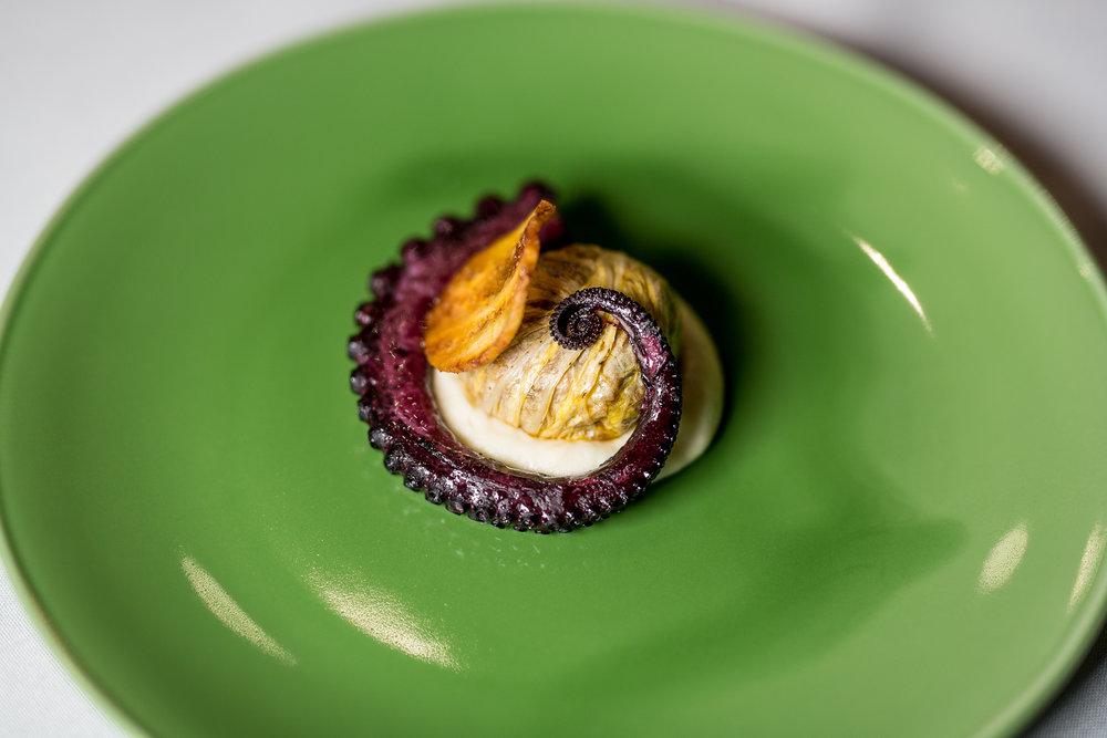 Hibiscus-Poached Octopus, Cochinita Chou Farci, Celery Root