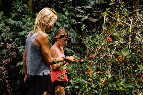 Costa-Rica-farm-3.jpg