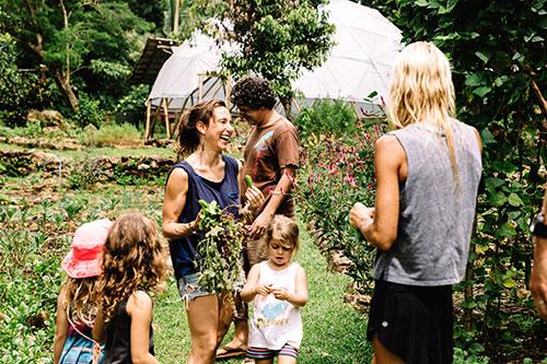 Costa-rica-farm-1.jpg