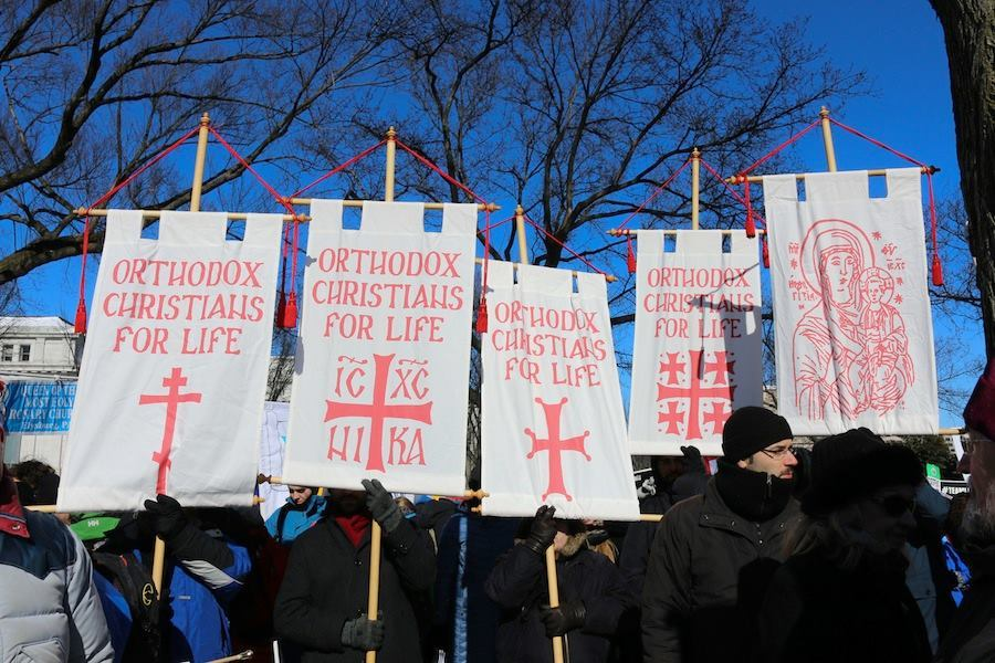 March-for-Life-Banners.jpg