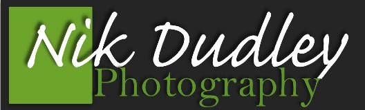 Partners_Nik Dudley.jpg