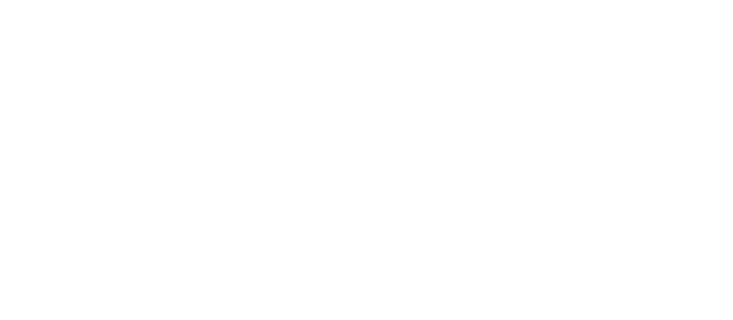 Mott Street Group Inc.