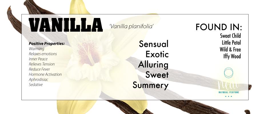 VANILLA_web.png