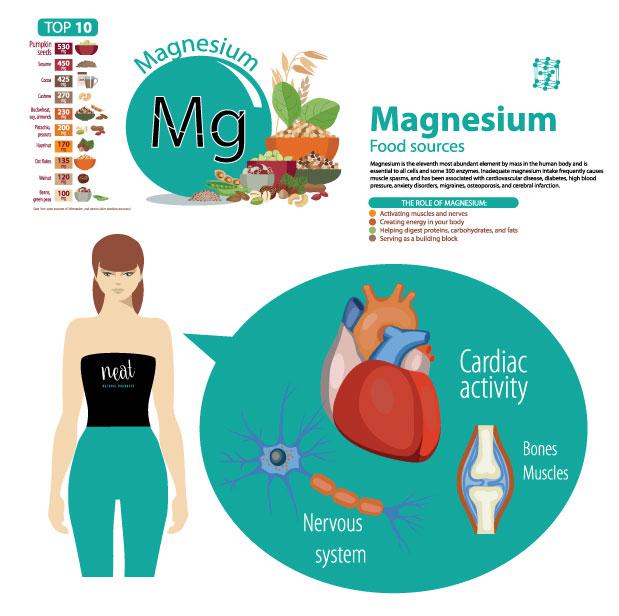 infographc-magnesium.jpg