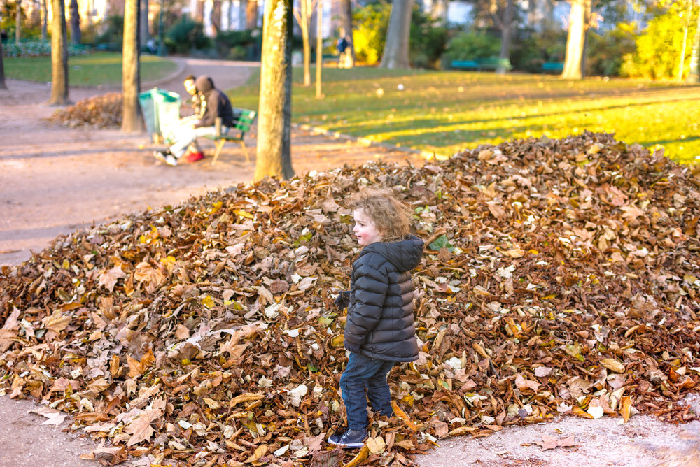 Tower shmower, there are leaves to play in...