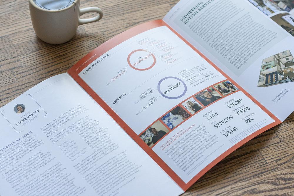 BI_Annual Report.jpg
