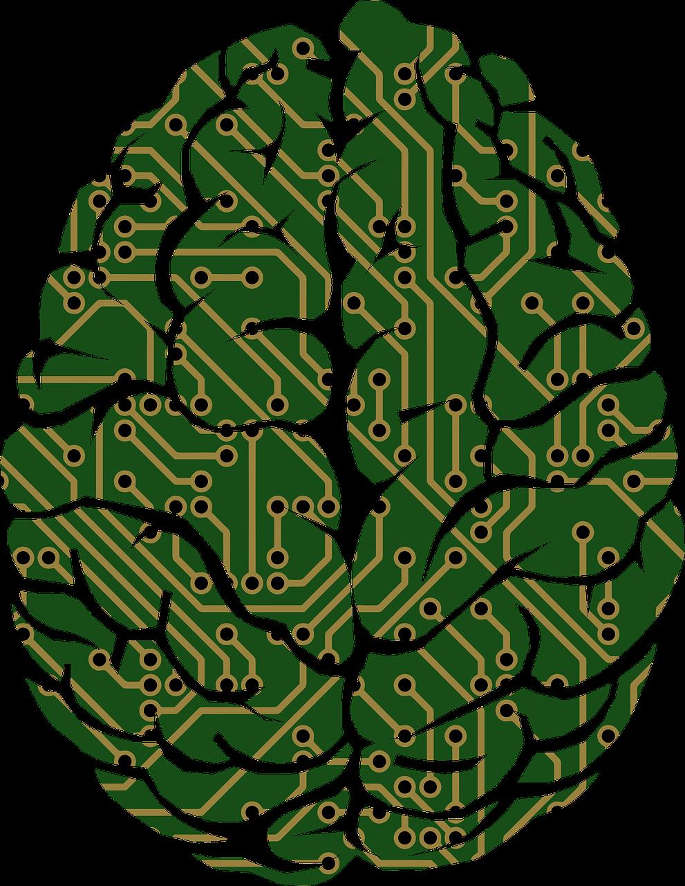 Brain-harddrive.png Pixabay.png
