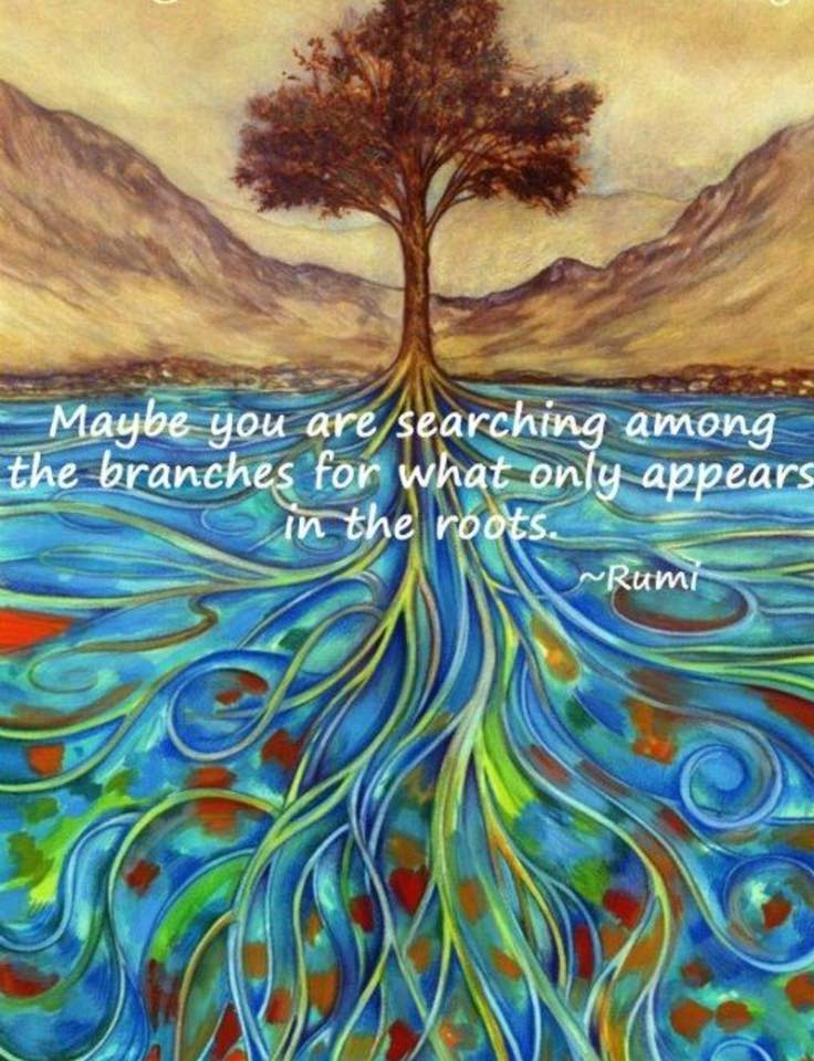 rumi quote- Searching among the branches for what only appears in the roots.jpg