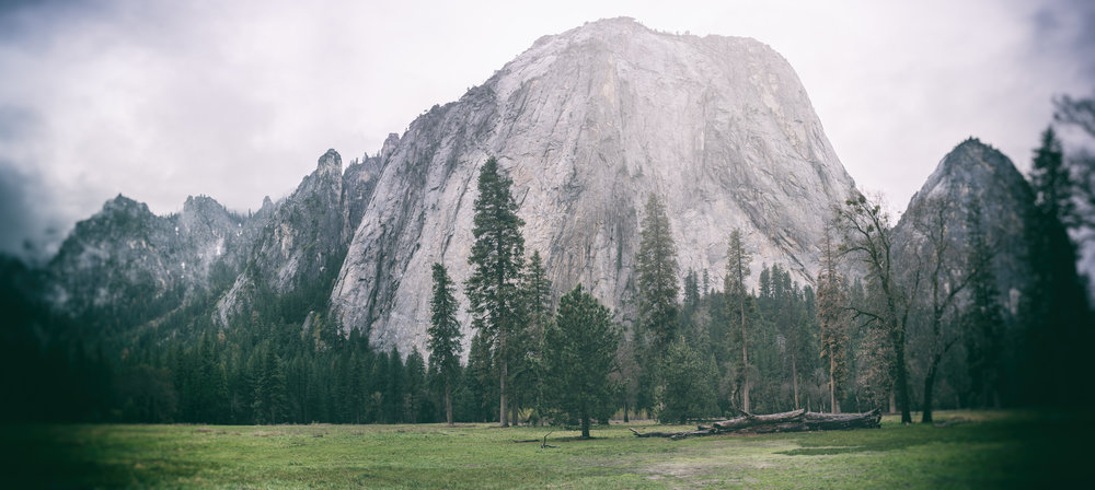 El Capitan Meadows, Yosemite