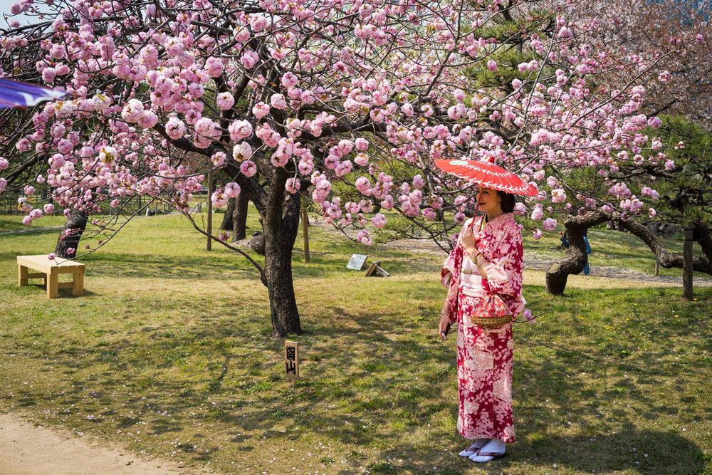 20140409 - Kimono in Tokyo Park.jpg