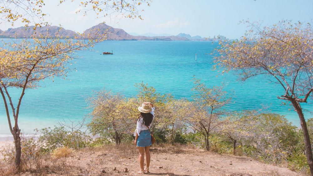 Komodo Island trek.jpg