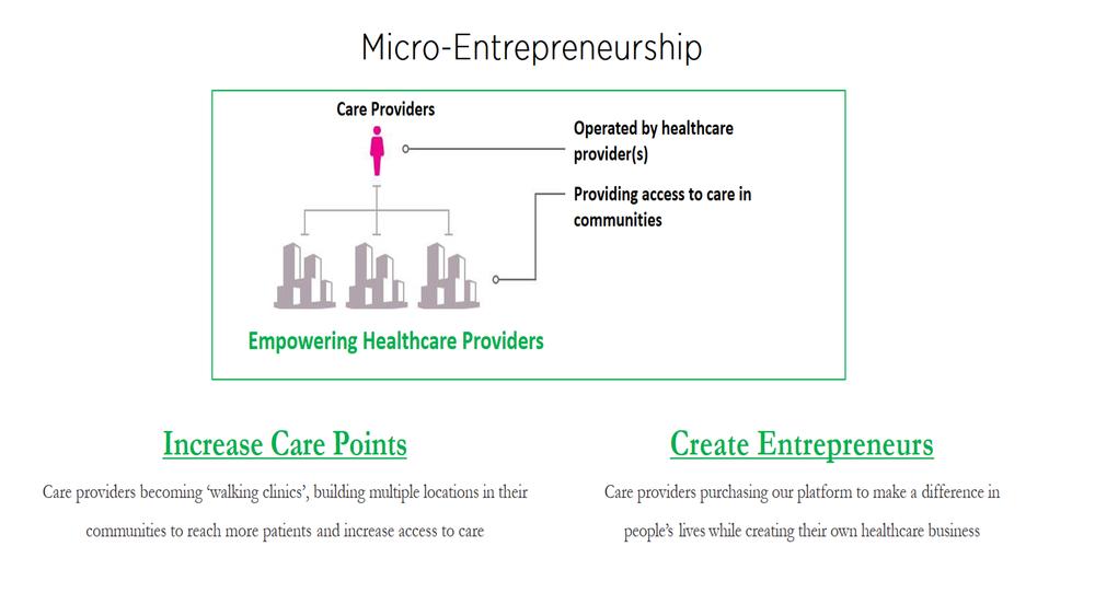 micro_Entrepreneurs.png