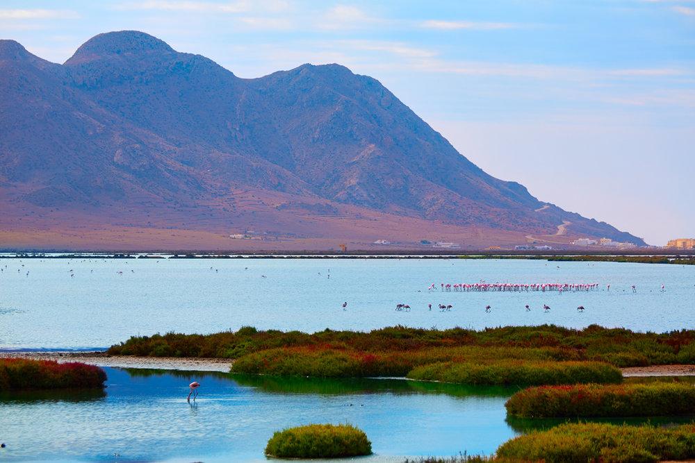 Parque Natural de Cabo de Gata (Almería) - Salinas.