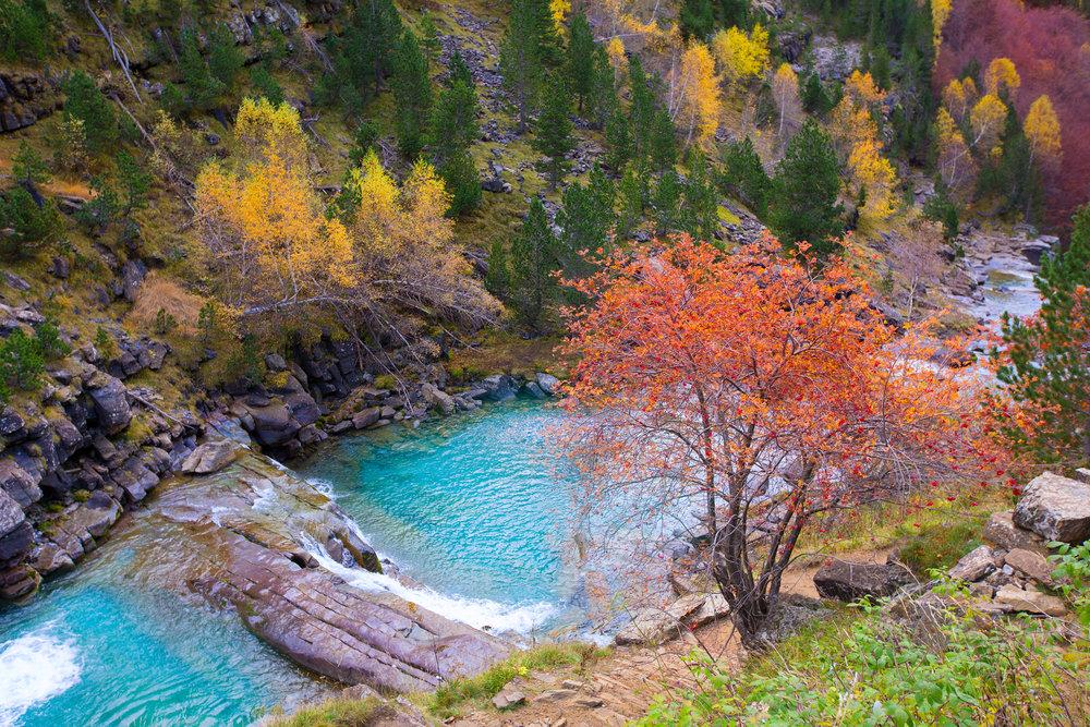 8 bosques en los que disfrutar del otoño - Valle de Ordesa
