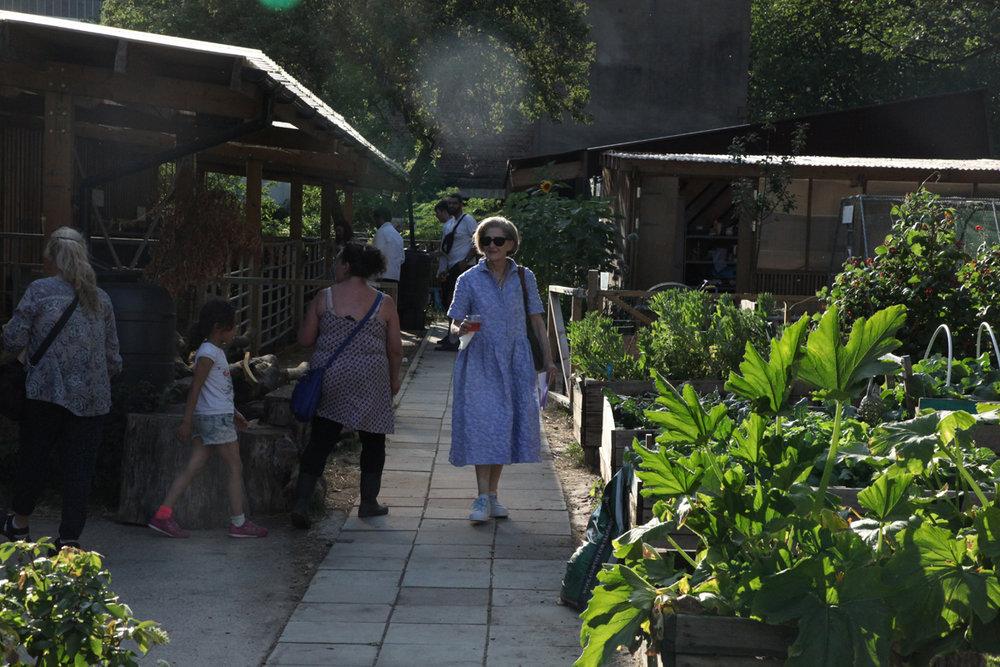 Pervilion at Oasis Farm Waterloo. Photo by Ottilie Landmark, courtesy Dorothy Feaver_9212.jpg