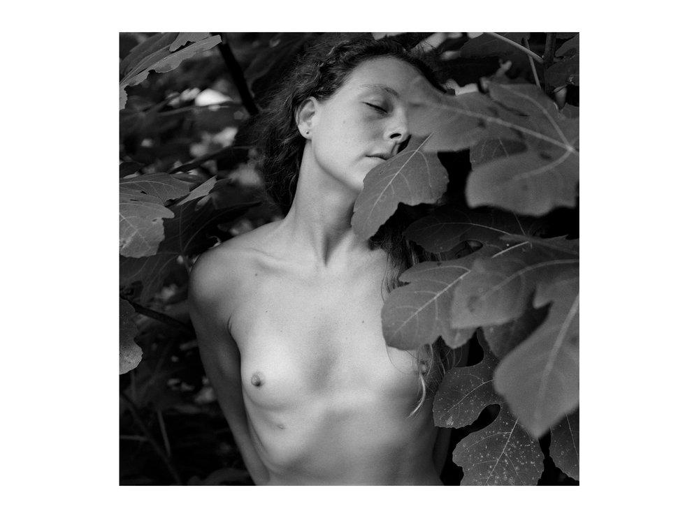 Rosesucker Retablo  , 1993.